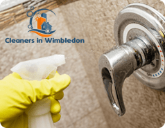 Domestic Cleaning Wimbledon