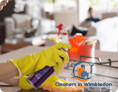 Spring Cleaning SW19