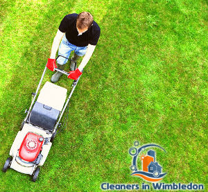 lawn-mowing-services-wimbledon