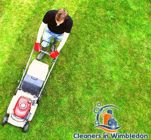 lawn-mowing-services-wimbledon