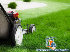 grass-cutting-services-wimbledon
